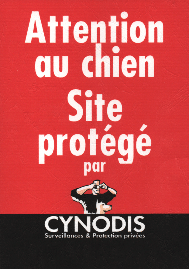 attention-cynodis