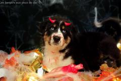 halloween-lesbergersauxyeuxdeciel-2019-7