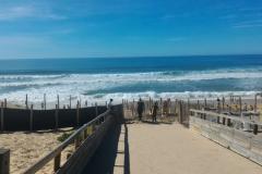 Les pattes dans le sable - Biscarrose 22 septembre 2018 (11)